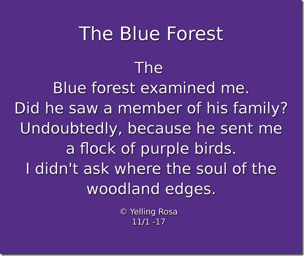 The Blue Forest E004 © Yelling Rosa