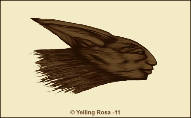 Predator © Yelling Rosa 2011